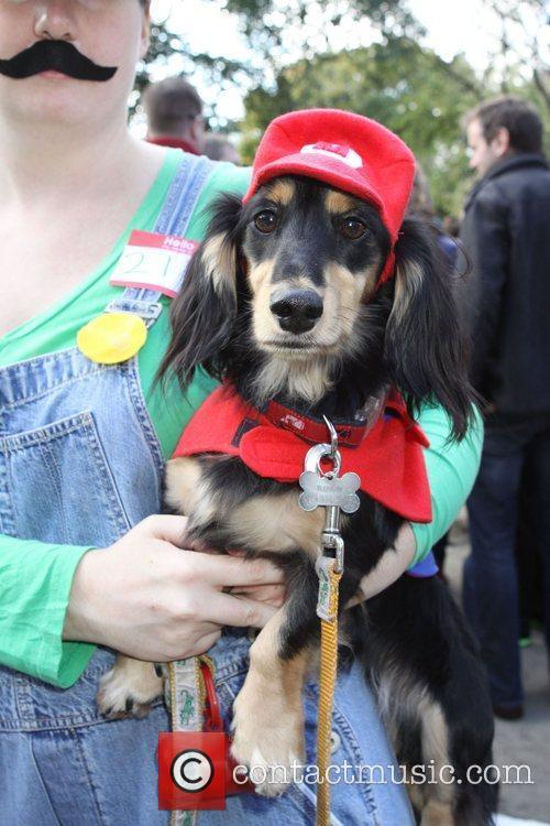 Mario dog The 21st Annual Tompkins Square Halloween...