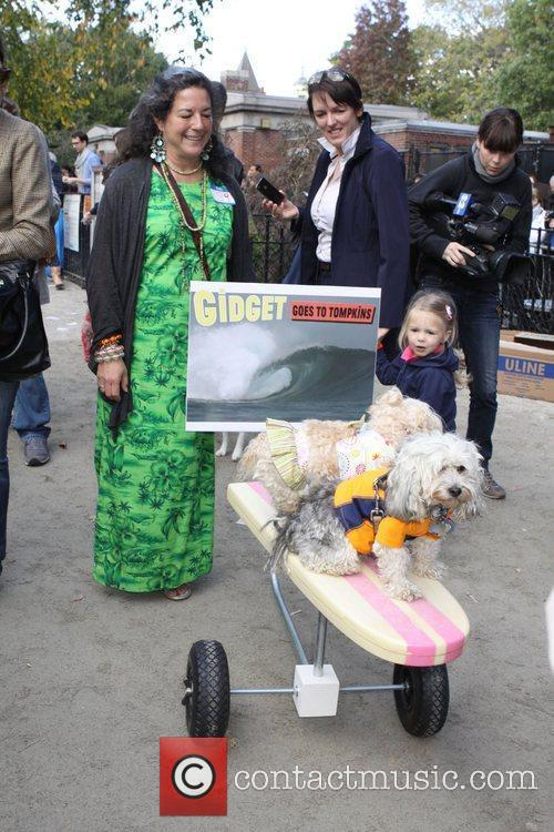 Surfing dogs The 21st Annual Tompkins Square Halloween...