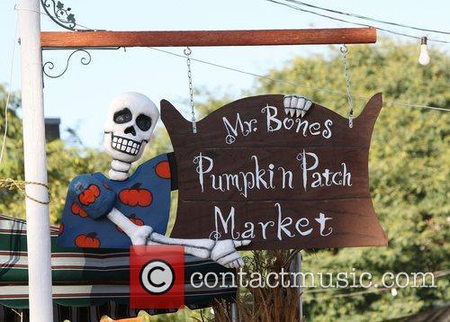 Atmosphere at Mr Bones Pumpkin Patch in West...