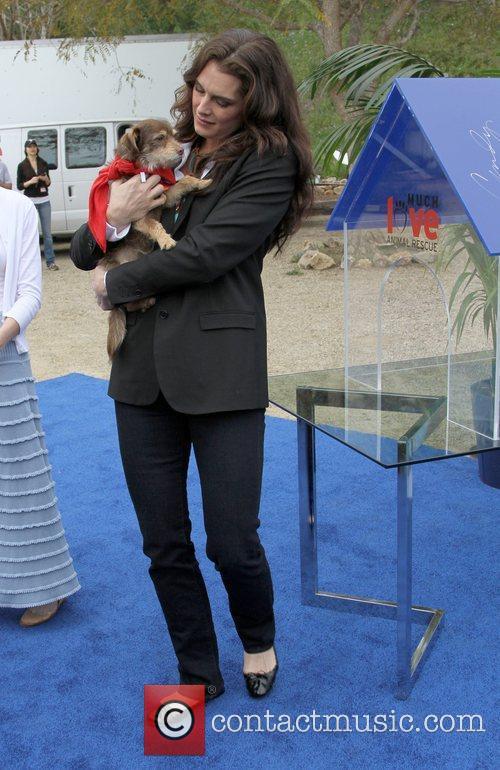 Brooke Shields Propel Zero to 1000 Celebrity Dog...