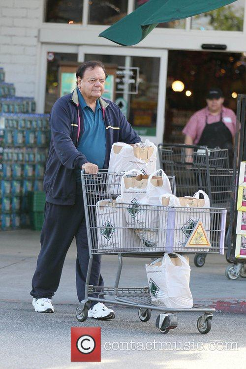 Paul Sorvino is seen grocery shopping at Bristol...