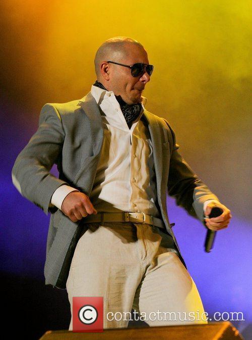 Pitbull 22