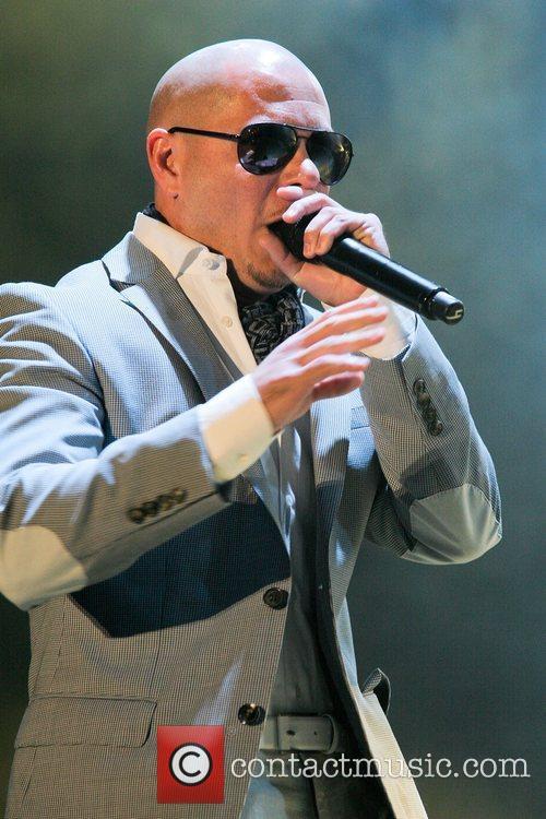 Pitbull 24