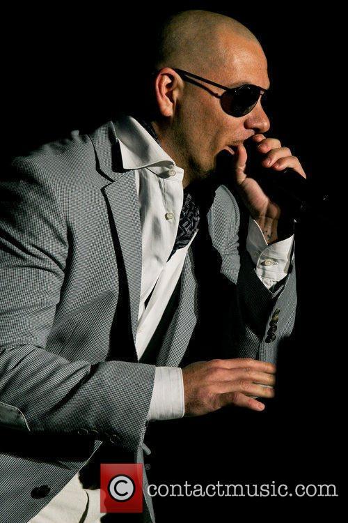 Pitbull 9