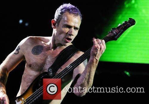 Red Hot Chili Peppers bassist Flea