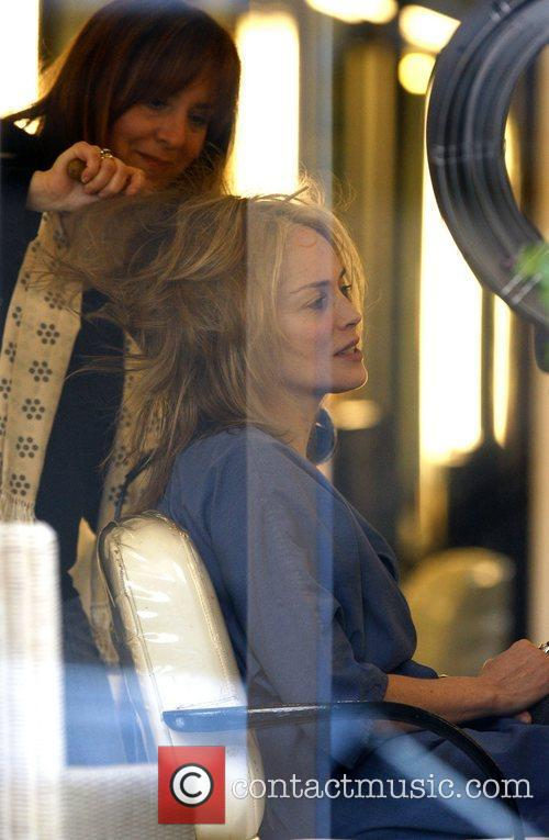 Sharon Stone and The Hair 6