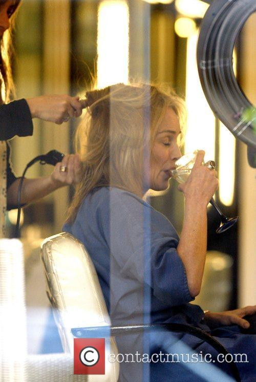 Sharon Stone and The Hair 2