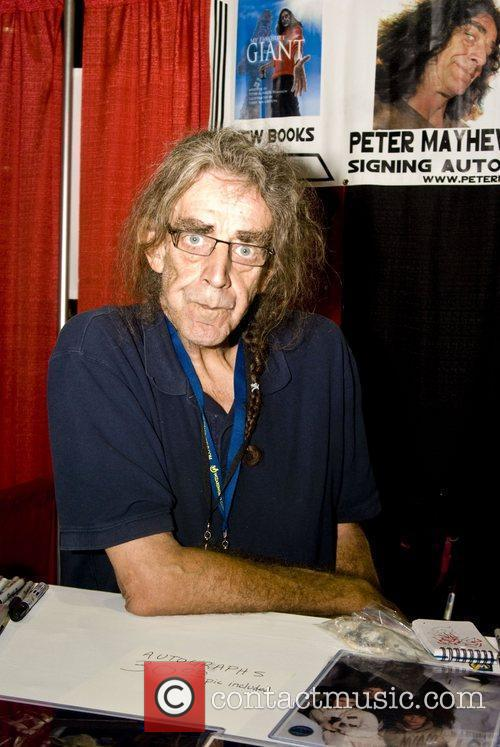 Peter Mayhew 3