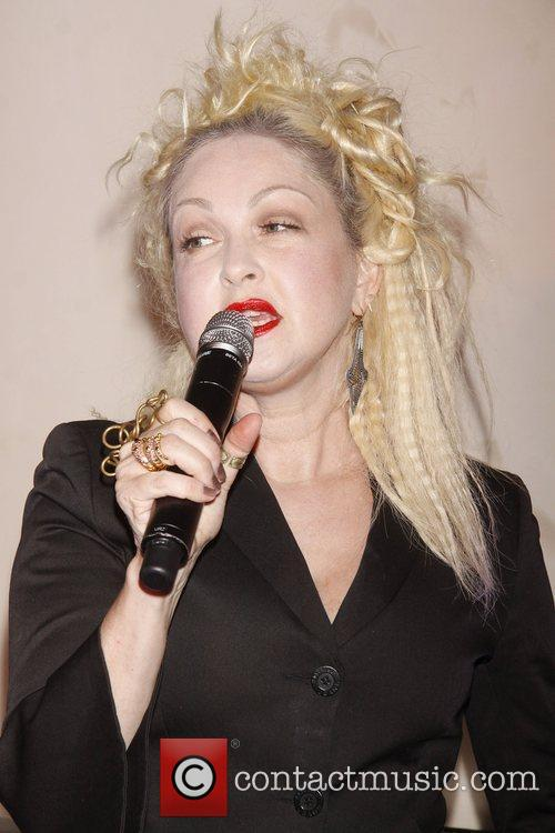 cyndi lauper the promotion for the upcoming 4063092