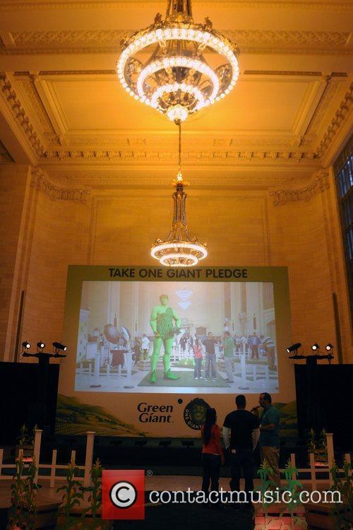 Alison Sweeney Kicks Off Green Giant's
