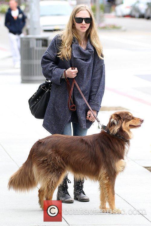 amanda seyfried seen walking her dog los 5830013