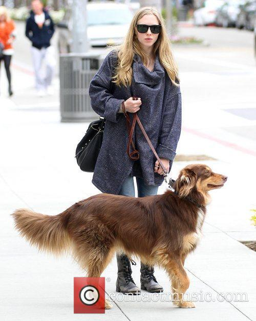 amanda seyfried seen walking her dog los 5830017