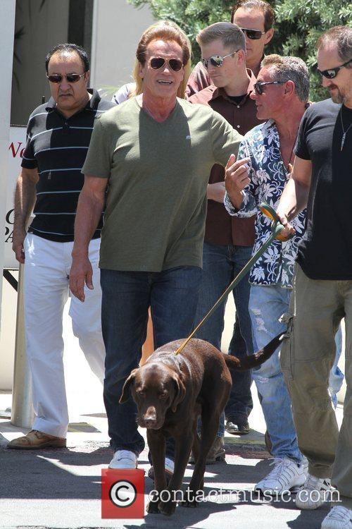 Arnold Schwarzeneggar is seen after lunch in Beverly...