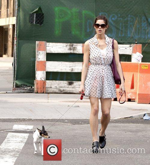 Ashley Greene walks her dog Marlow on the...