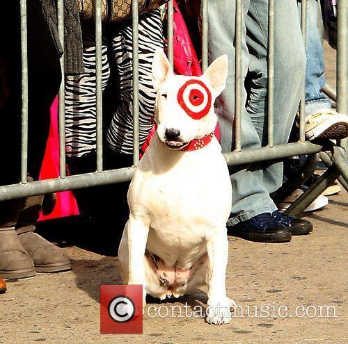 The Target Dog  The Billboard Women in...