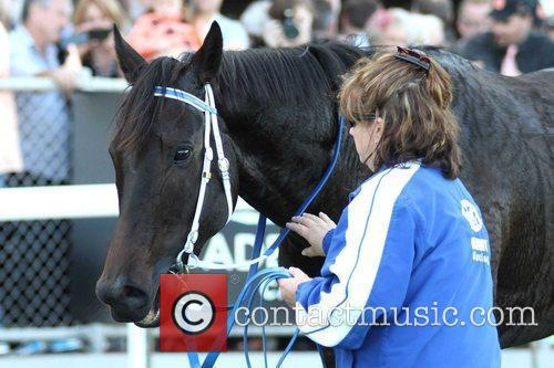 Morphettville, Adelaide front of a sellout crowd of...