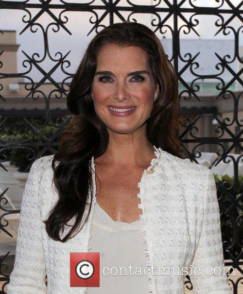 brooke shields the cast of hot flashes 3952901