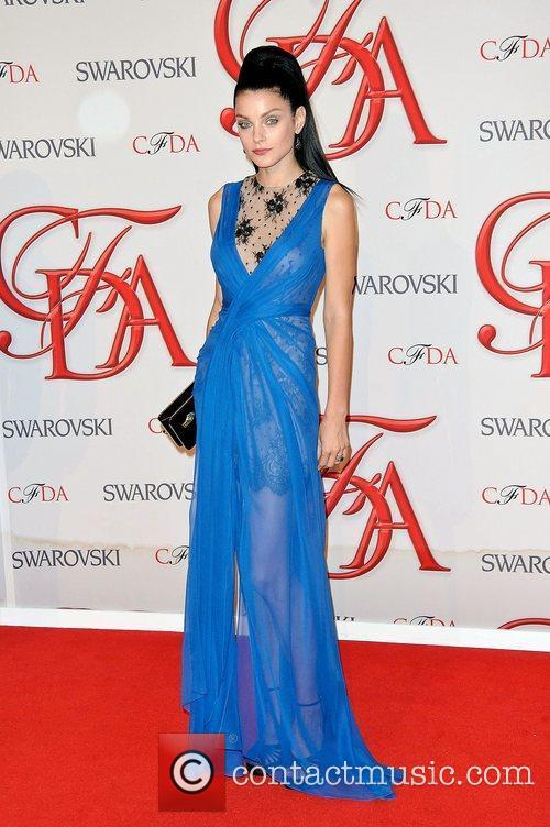 Jessica Stam and Cfda Fashion Awards 3