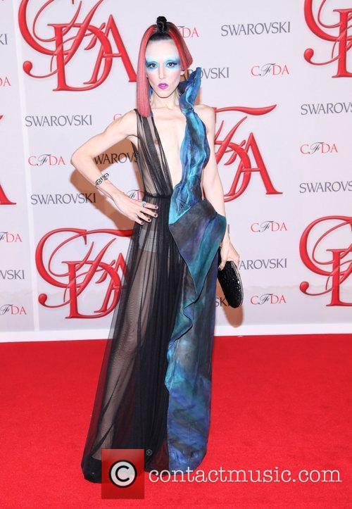 Cfda Fashion Awards 10