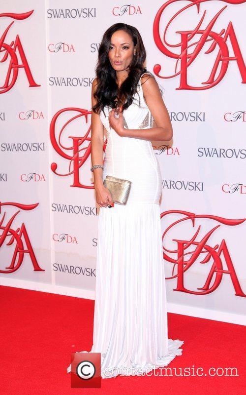 2012 CFDA Fashion Awards held at Alice Tully...