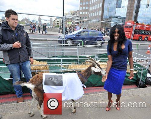 Heather Small International Widows Day - Celebrity Goat...
