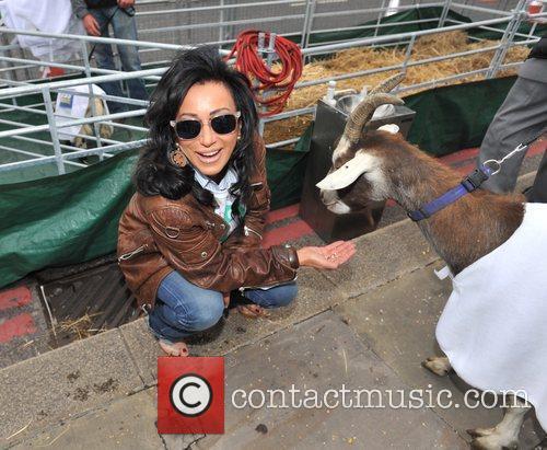 International Widows Day - Celebrity Goat Walk