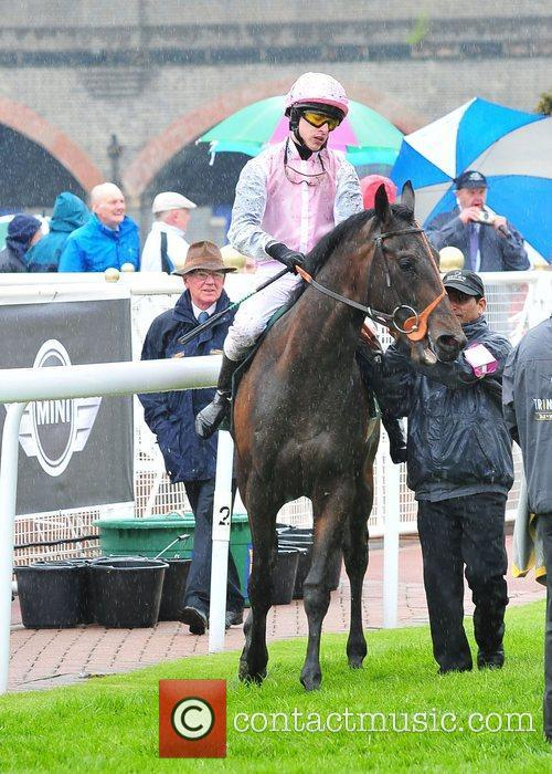 May Cup Day held at Chester racecourse