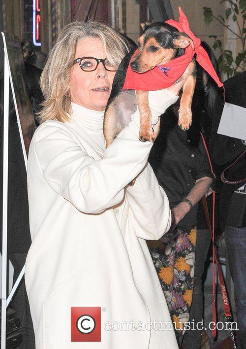 diane keaton premiere of sony pictures classics 3832192