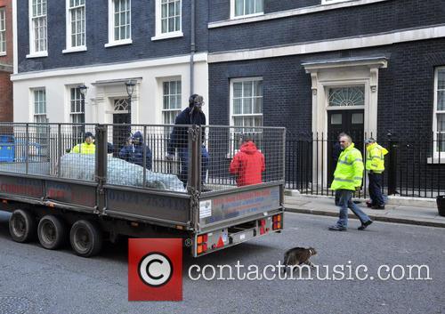 Freya, British Christmas Tree Growers, Christmas, Association and Downing Street 1