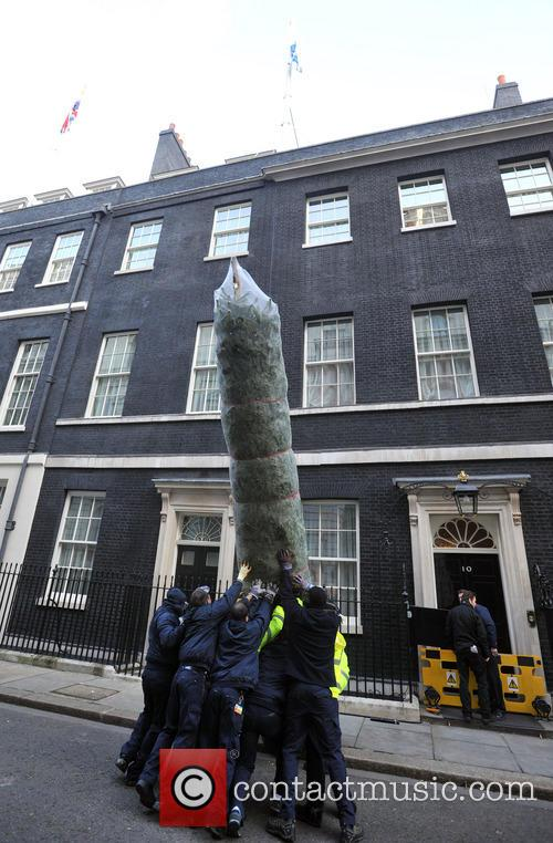 The British Christmas Tree, Christmas, Growers Association and Downing Street 9