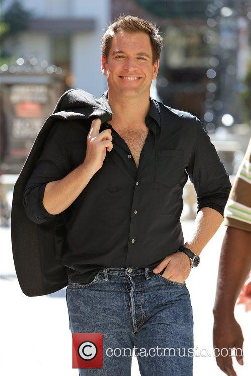 Michael Weatherly 1