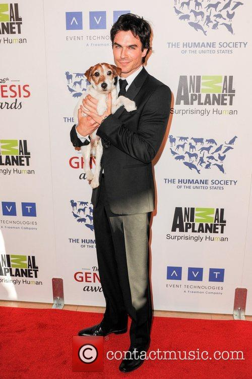 Ian Somerhalder and Uggie the dog The Human...