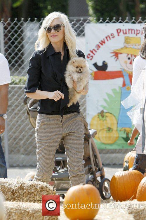Gwen Stefani  At Shawn's pumpkin patch, Culver...