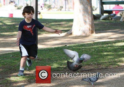 Kingston Rossdale chasing pigeons while spending the day...