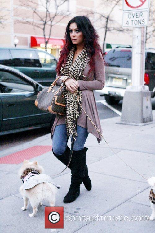 Jenni 'JWoww' Farley walking her two dogs after...
