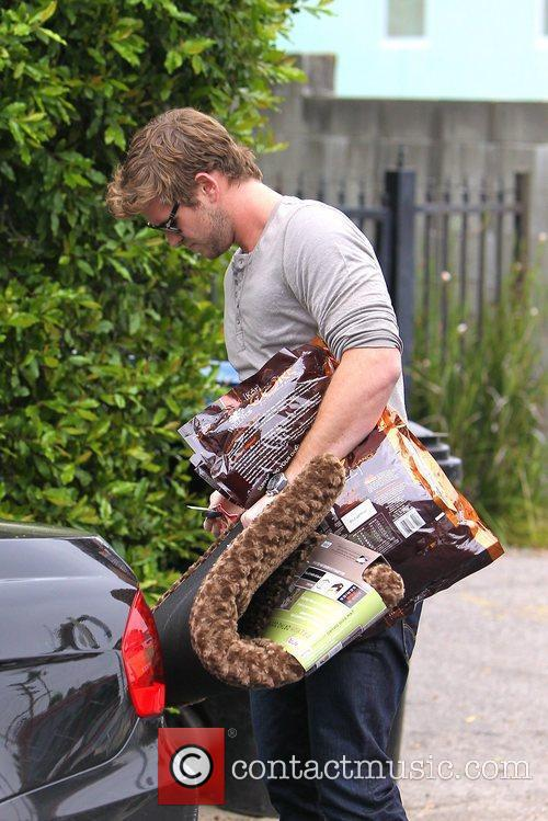 liam hemsworth picks up some supplies at 5834657