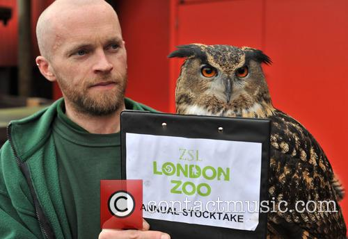 Zookeepers prepare to count every animal at ZSL...