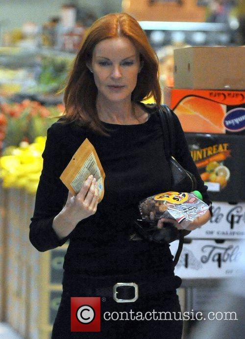 marcia cross shops at the whole food 3888211