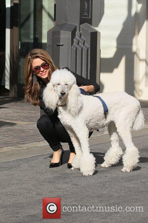 maria menounos out walking her dog at 5772083