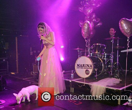 Marina Diamandis and Marina and the Diamonds 16