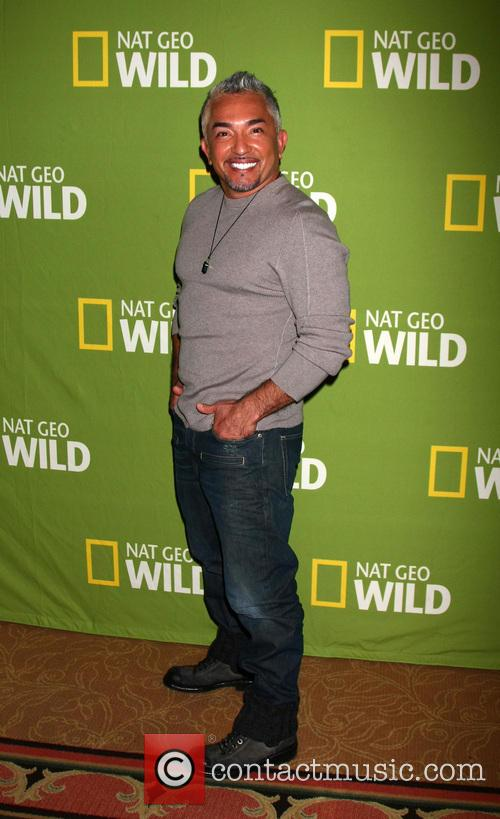 cesar millan national geographic channels tca party 20040758