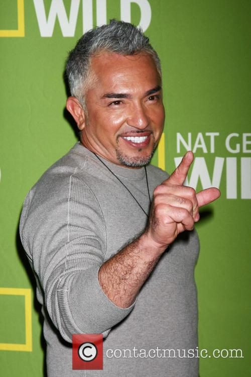 cesar millan national geographic channels tca party 20040759