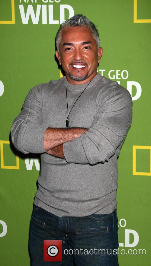 cesar millan national geographic channels tca party 20041069