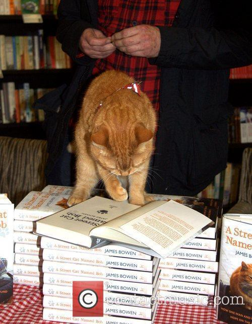 Bob the street cat reads his copy! James...