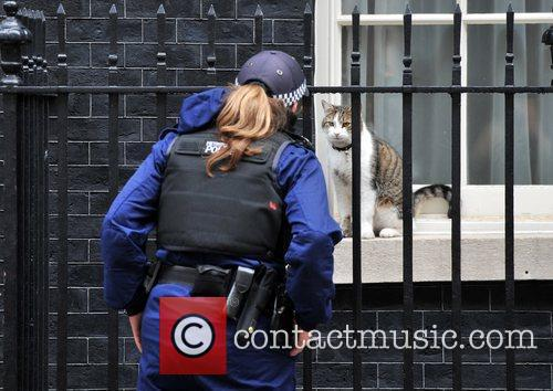 10 Downing Street 3