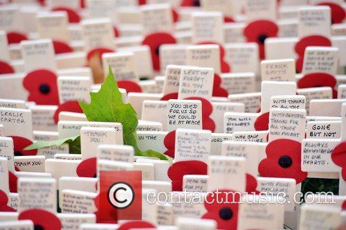 Veterans, Field, Remembrance and Westminster Abbey 16