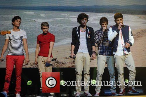 Niall Horan, Zayn Malik, Liam Payne, Harry Styles...