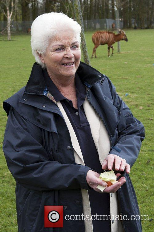 Pam St. Clement launches Lookout Lodge at Whipsnade...