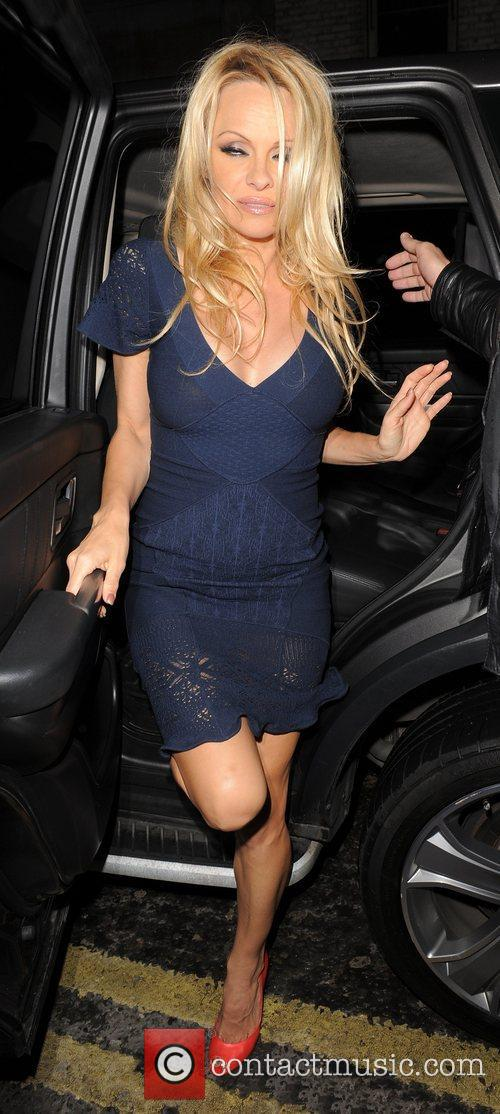 pamela anderson enjoys a night out in 3838309
