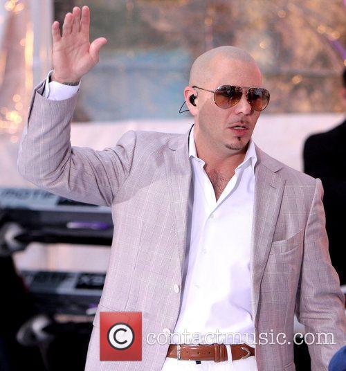 Pitbull 6